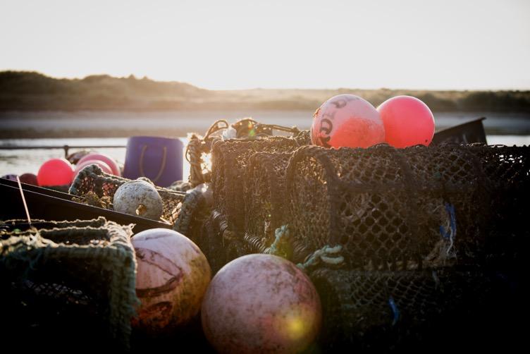 https://coastal-havens.co.uk/wp-content/uploads/2020/02/lymington-salterns-lodge.jpg